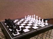 шахматы дорожные.....
